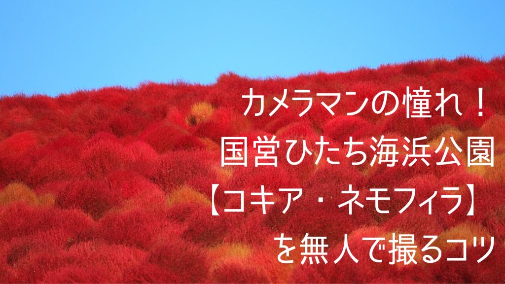 hitachi_seaside_park_01